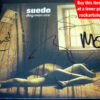 Suede Fully Signed Dog Man Star