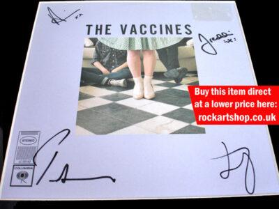 The Vaccines Norgaard Vinyl