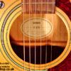 Brian May Signed Guitar
